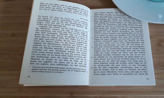 Lesenlieben Blog